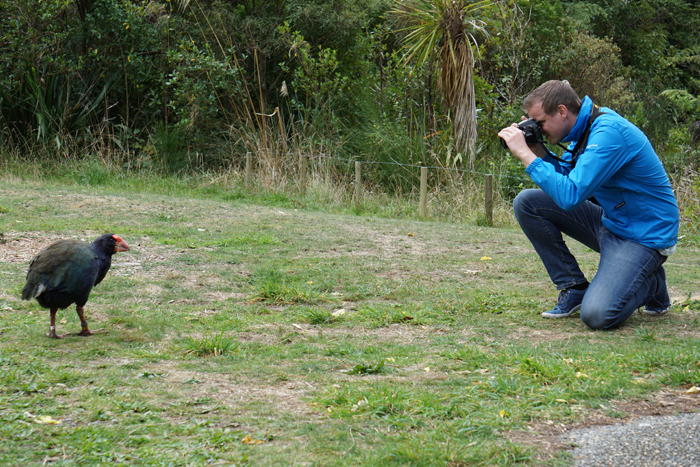 Op camperreis op het Noordereiland in Nieuw-Zeeland